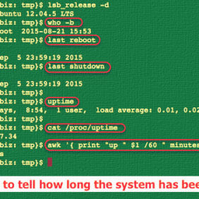 Linux Server See the Historical and Statistical Uptime of System With tuptime Utility