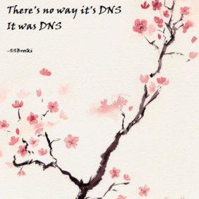 A haiku about DNS